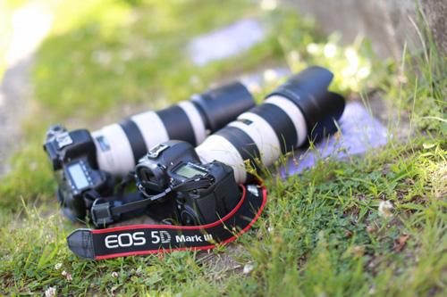 使用したカメラ