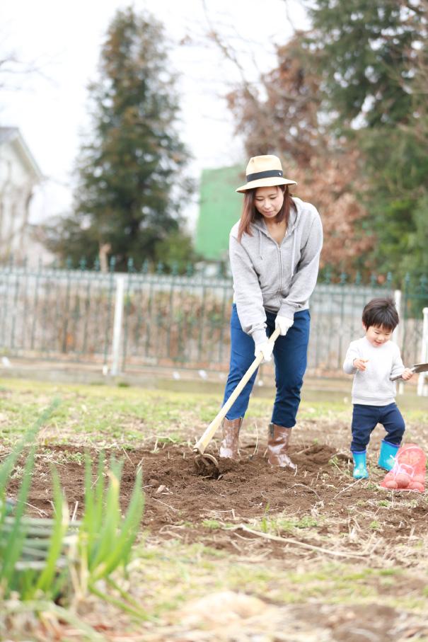 市民農園を借りてじゃがいも植えに挑戦する親子