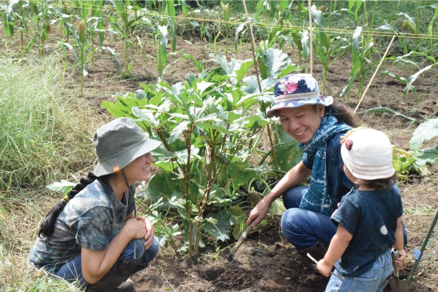 家族で畑 農作業