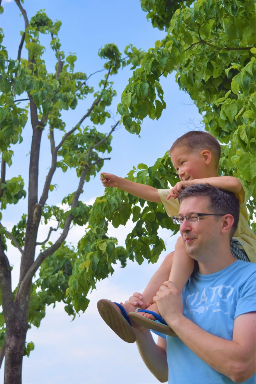 進修館の自然と触れ合う親子