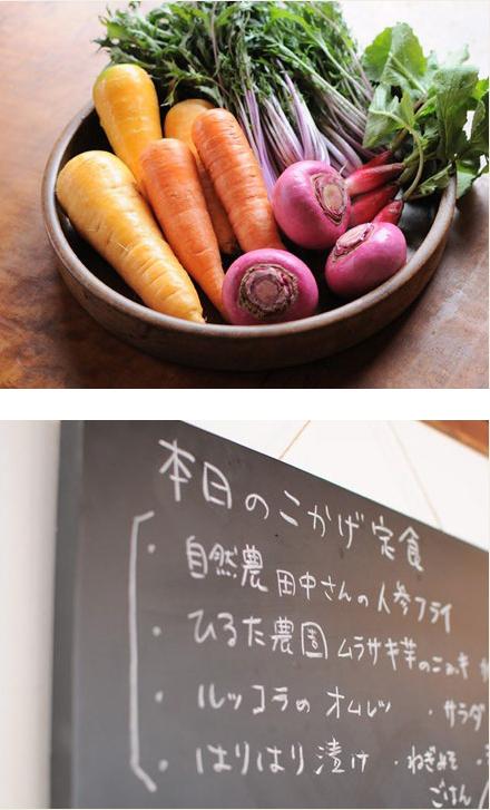 cafeこかげ お野菜とメニュー