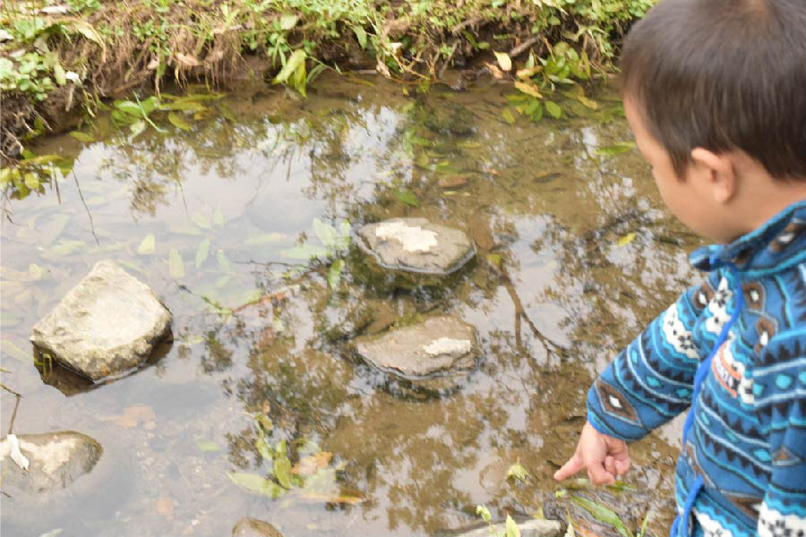新しい村 自然で遊ぶ子ども