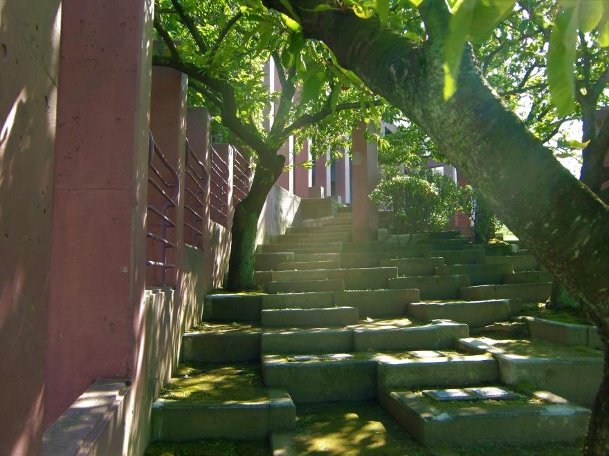 進修館 遺跡の様な石段