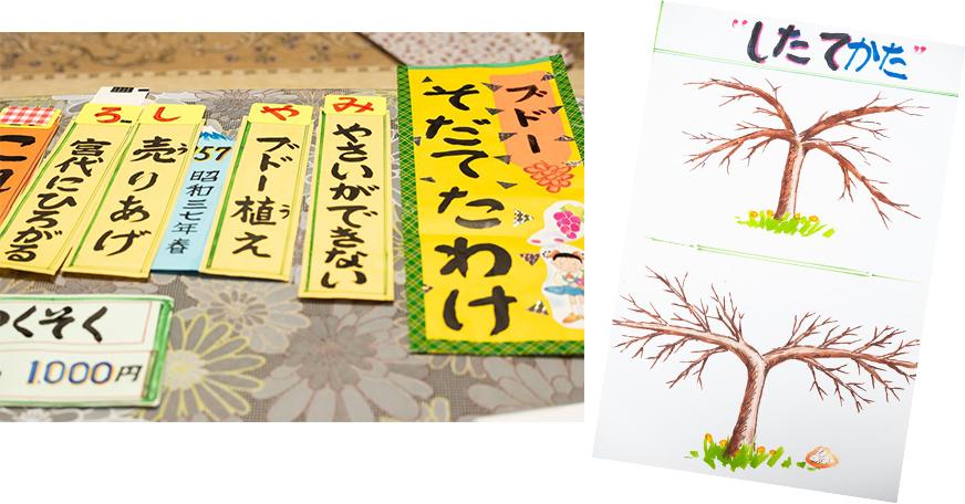 地元の小学校で行った、ぶどう栽培についての特別授業のための道具