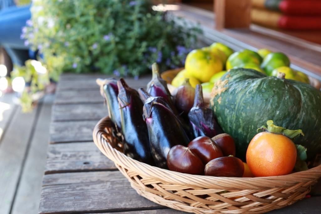 かごに入った秋の収穫物