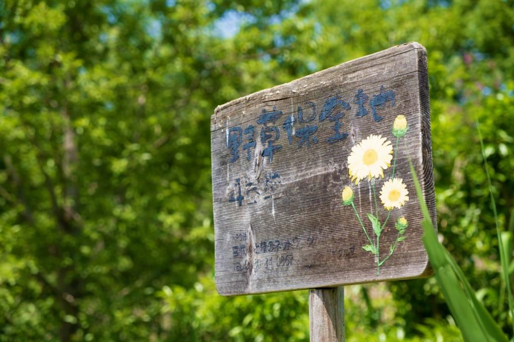 野草保全の看板