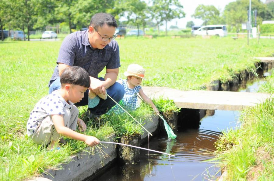 水路でザリガニ釣りをする親子