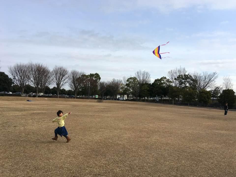 凧が上がったところ