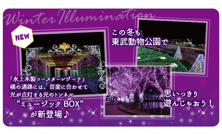 winterirumi_b